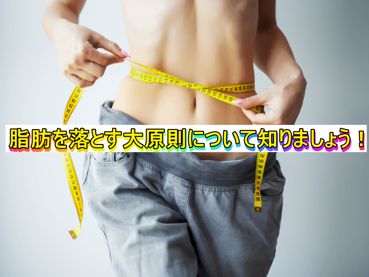 脂肪を落とす大原則について知りましょう!