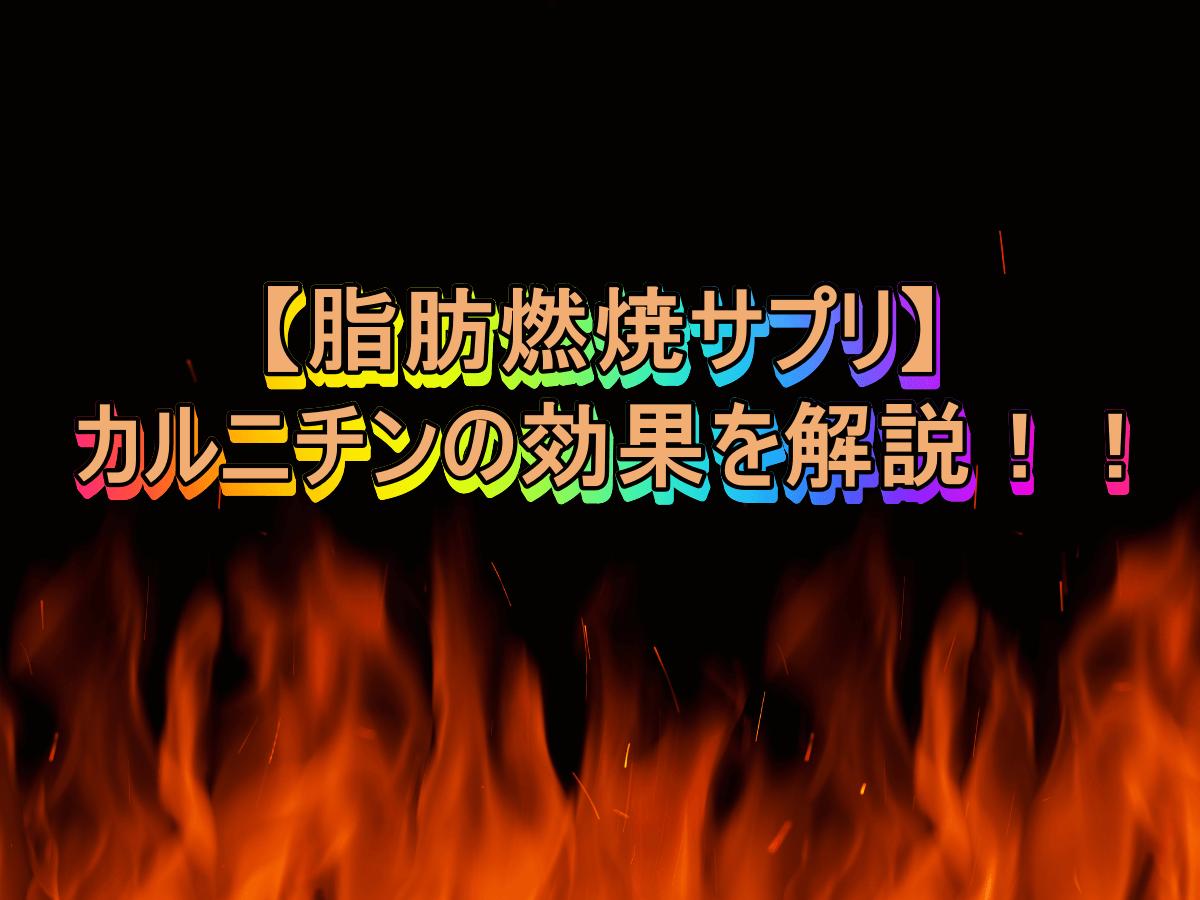 【脂肪燃焼サプリ】カルニチンの効果を解説!!