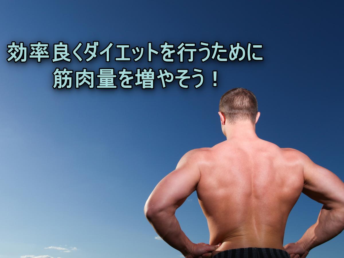 効率良くダイエットを行うために筋肉量を増やそう!